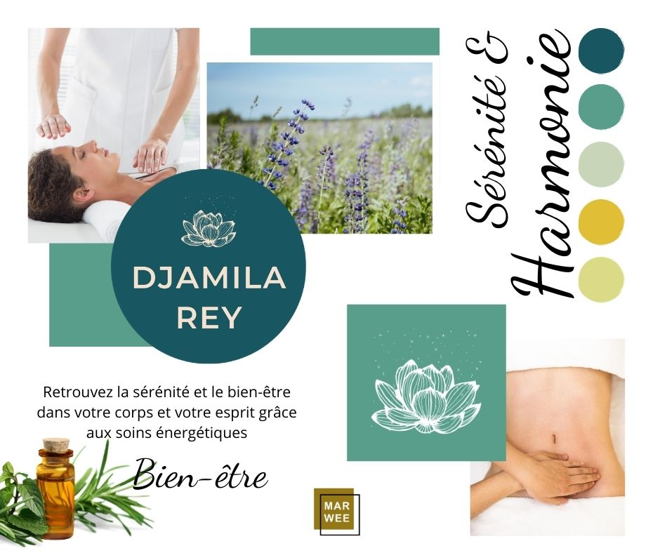 Djamila Rey charte graphique, identité visuelle, projet Marwee, consultant web marketing Cruseilles
